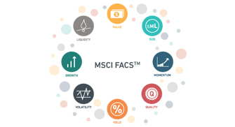 Introducing MSCI FaCS